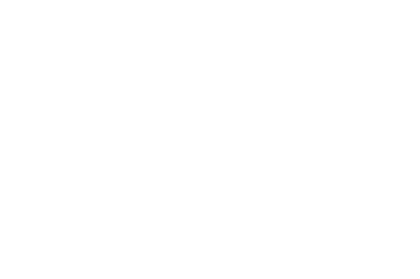 Clinton House Museum logo
